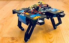 A four-legged robot was inspired by the motion of a cat