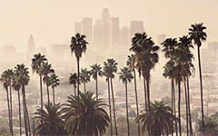 USC researchers have documented which neighborhoods have more air pollution in a new report. (Photo/Shutterstock)